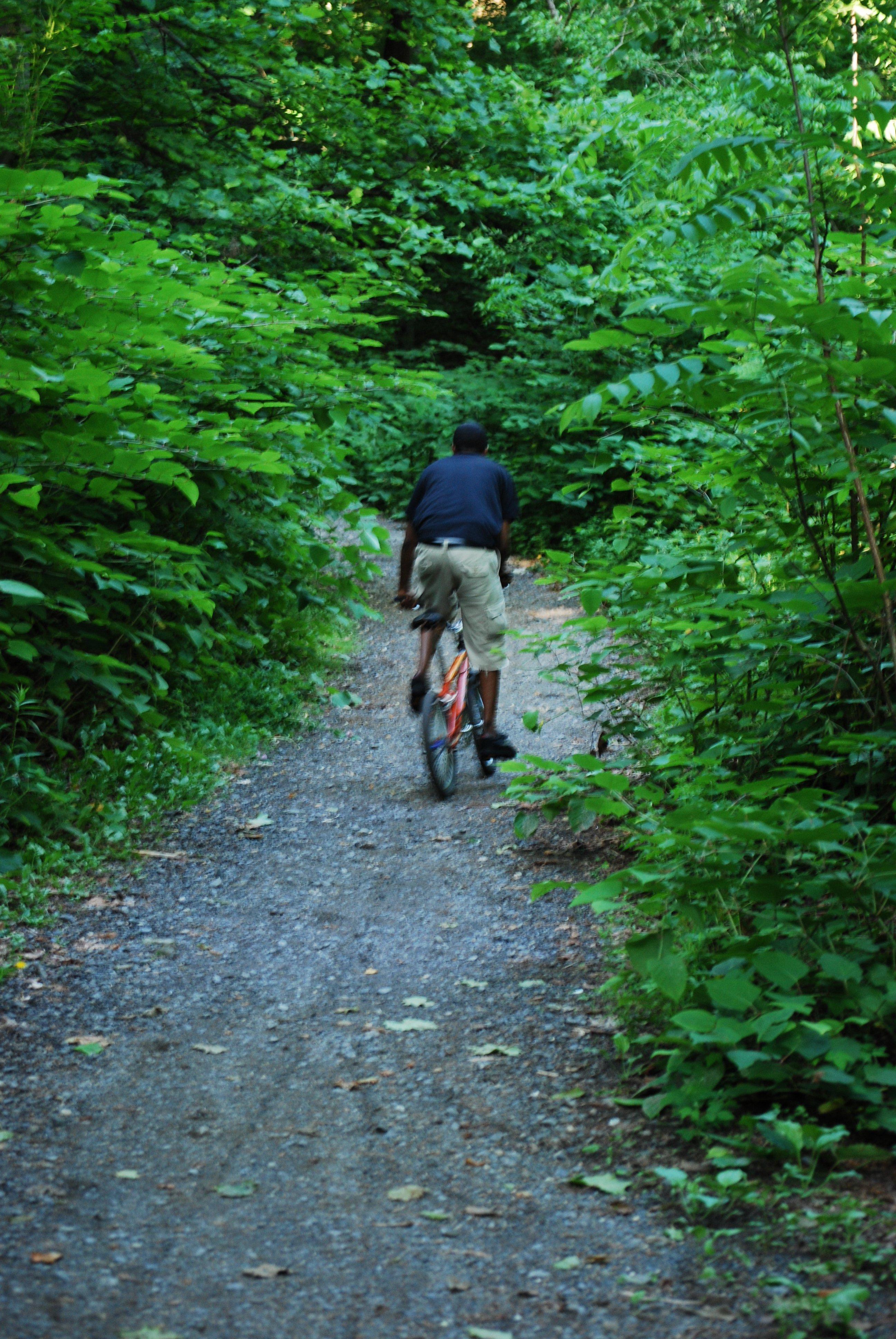 Mountain Biking near Forbidden Drive