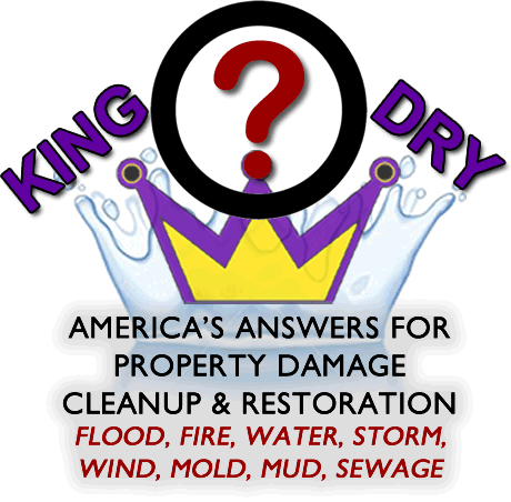 King Dry Water Damage Info Splash Image