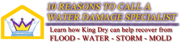 King Dry 10 Reasons Banner
