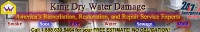 King Dry Water Damage Services Banner