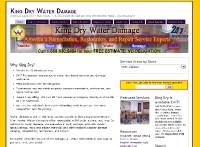 KingDryWaterDamage.com (Wordpress) Site
