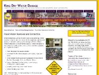 KingDryWaterDamage.com Dynamic Pages
