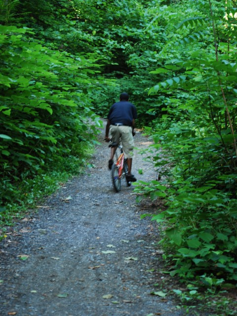 Mountain Biking near Forbidden Drive