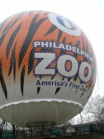 Hot Air Balloon Rises to the Occasion above the Philadelphia Zoo