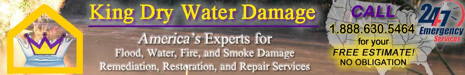 King Dry Water Damage Banner